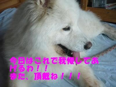 032_3